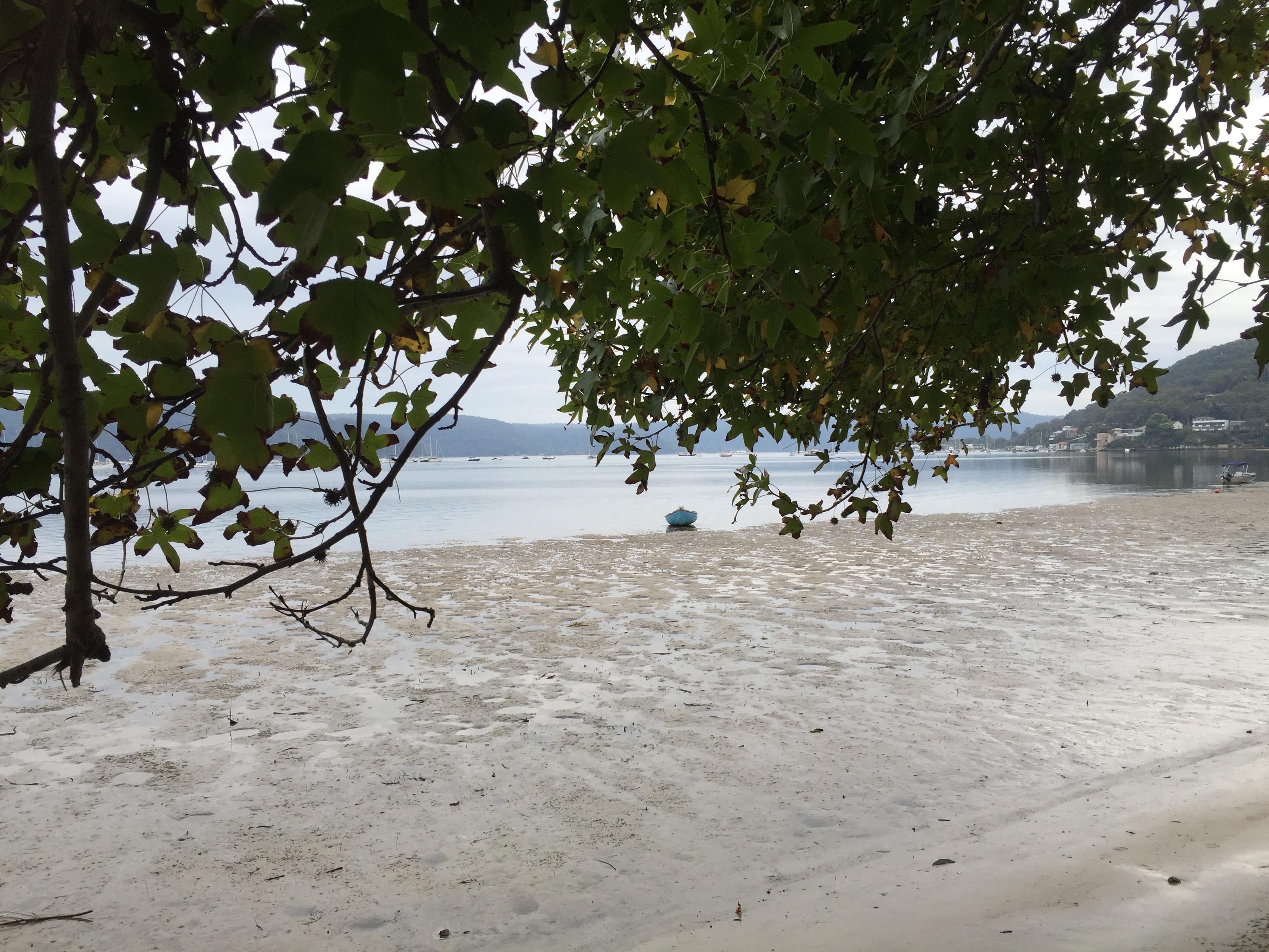Tranquil boat scene